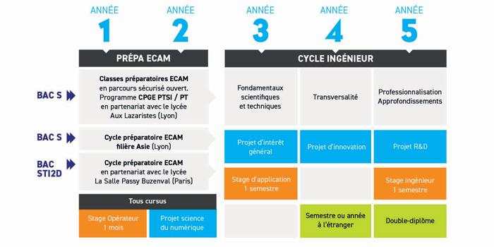 Graphique-formation-ECAM-Arts-et-Metiers-ECAM-Lyon-2019