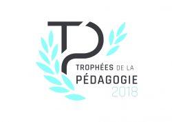 Trophée-pedagogie-ecole-ingenieur-ecam-lyon